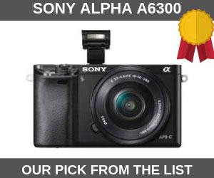 Sony Alpha a6300 Vlogtribe Camera for Pranks