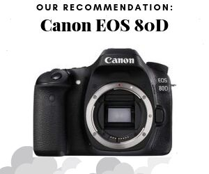 Vlogtribe pick for Makeup Vlogs Canon EOS 80D