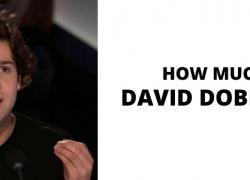 How Much Does David Dobrik Make? Full YouTube Earnings Report!
